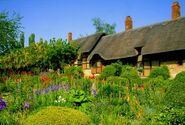 Anne-hathaway-s-cottage