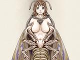 Moth Girl/Paradox