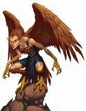 Harpy4e