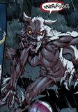 HS9Ursulawolf