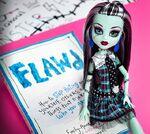 Diorama - FLAWD Frankie