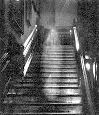 Brown Lady of Raynham Hall,