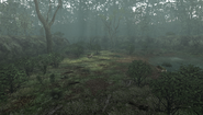 MHFU-Forest and Hills Screenshot 043