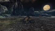 MHP3-Misty Peaks Screenshot 013