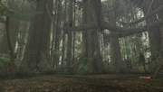 MHFU-Old Jungle Screenshot 043