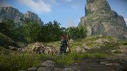 MHO-Forest and Hills Screenshot 009