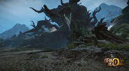 MHO-Dark Veil Forest Screenshot 004
