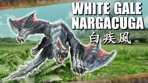 Silverwind Nargacuga Videos