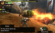 MH4U-Congalala and Emerald Congalala Screenshot 002