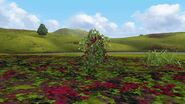 MHFGG-Flower Field Screenshot 006