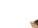 Beo Hatchets II (MHWI)