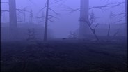 MHF1-Swamp Screenshot 007