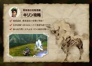 MH4-Kirin Strategy