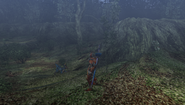 MHFU-Forest and Hills Screenshot 020