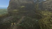 MHFU-Jungle Screenshot 011