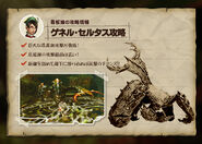 MH4-Seltas Queen Strategy
