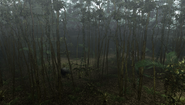 MHFU-Old Jungle Screenshot 040