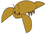 Konchu