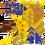 MHXR-Gilded Diablos Icon