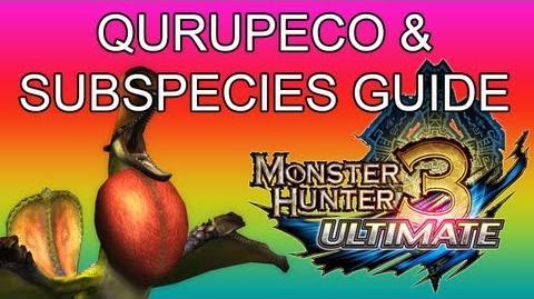 Monster Hunter 3 Ultimate - G1★ Qurupeco & Crimson guide クルペッコ亜種-0