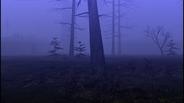 MHF1-Swamp Screenshot 014