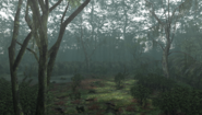 MHFU-Forest and Hills Screenshot 056