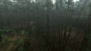 MHFU-Old Jungle Screenshot 039