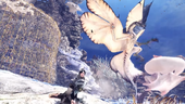 MHW-Legiana and Paolumu Screenshot 001
