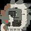 MHO-Silver Rathalos Icon