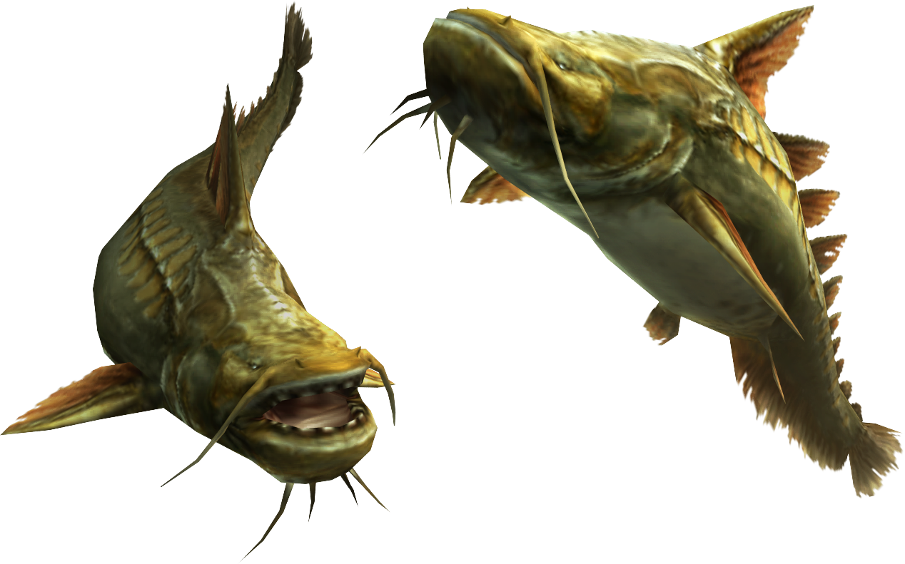 how to fish plesioth mh4u