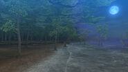 MHFG-Isla Marea 005