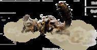 MH4-Render Rhenoplos