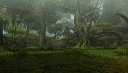 MHFO-Gran Bosque 006