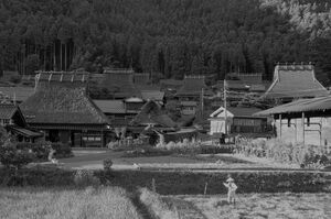 Shizu village