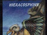 Heiracosphinx