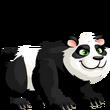 Panda-fase2