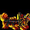 Plethodon-fase2