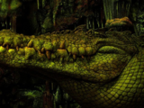 Crocodile (2003 Peter Pan)