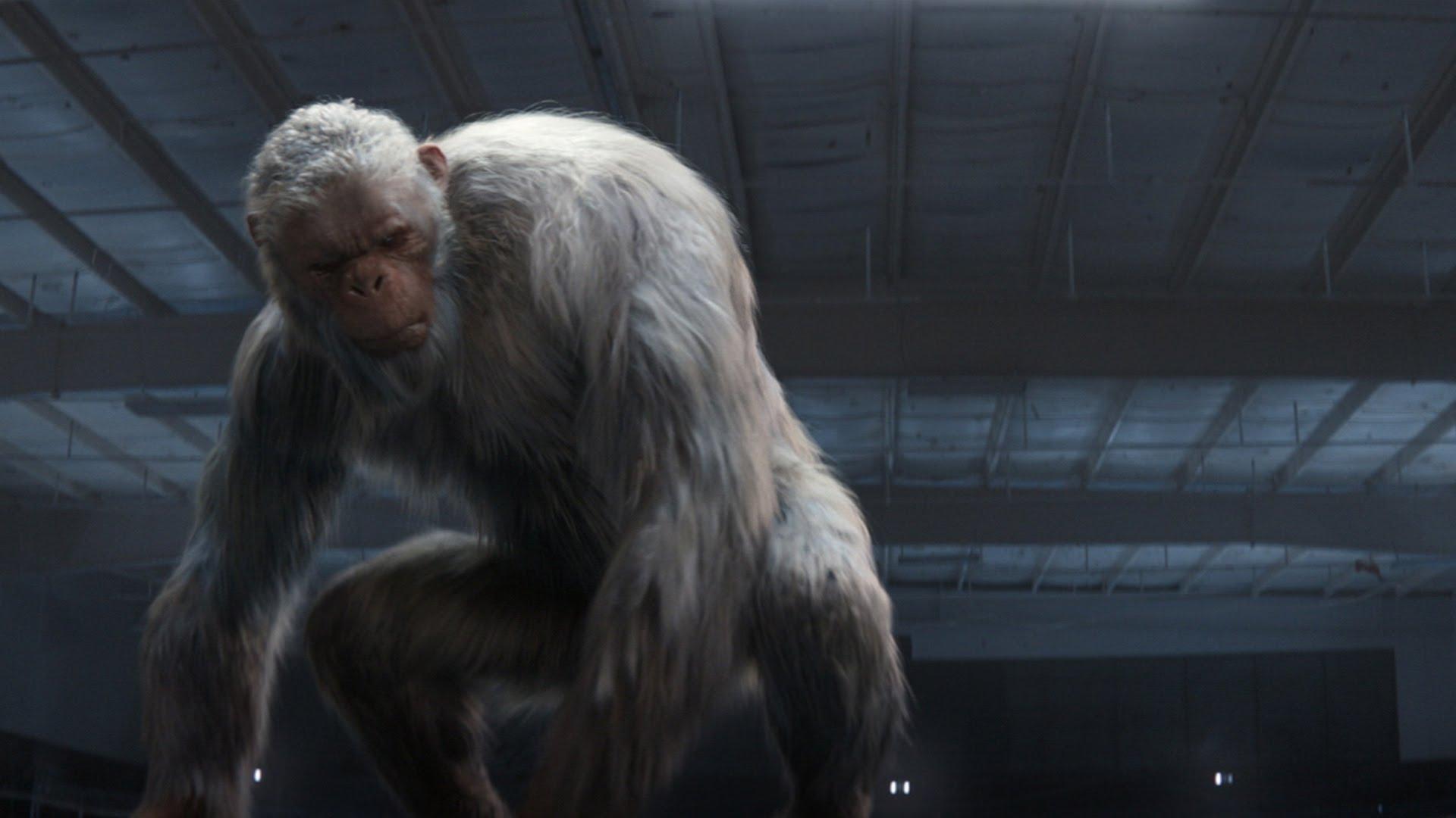 Abominable Snowman Goosebumps Monster Moviepedia Fandom