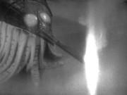 180px-Larvae gun firing