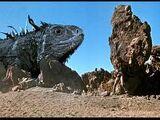 Giant Blue Iguana
