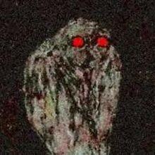 Owlman Monster Moviepedia Fandom