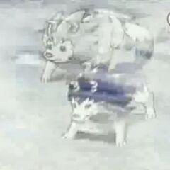 Tiger und Wolfszahn als Kinder