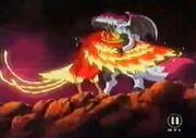 Phoenix und Moo