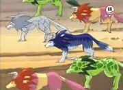 Tigers und Wolfszahns Gruppe