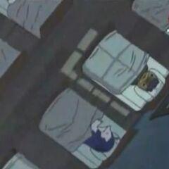 Nyankoro und die anderen Mocchis schlafen