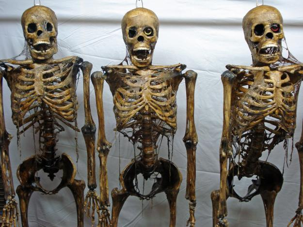 Skeleton monsterspedia wiki fandom powered by wikia - Scary skeleton games ...