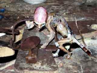 Alien baby mexiko-1-