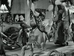 Die muminfamilie 11