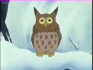 Owl (The Midwinter Bonfire)